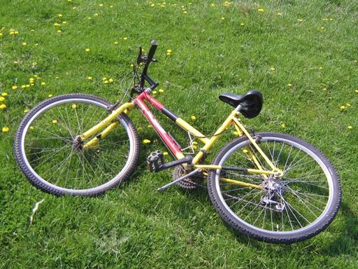 verde-pentru-biciclete
