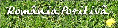 logo_romania_pozitiva