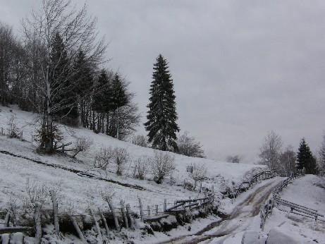 iarna-pe-ulitza