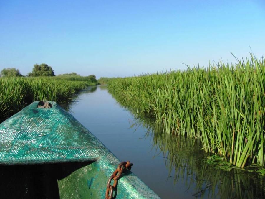 barca canal delta