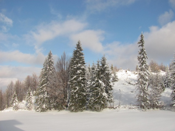 feerie de iarna munte romaniapozitiva