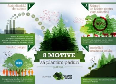 INFOGRAFIC 8 motive să plantăm păduri