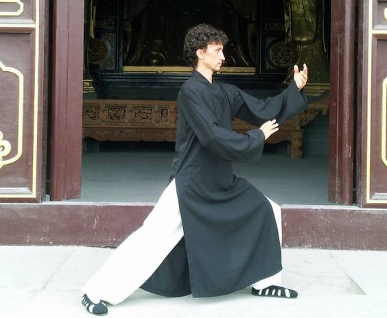 Damian Ming - Wudang Taiji iulie 2012
