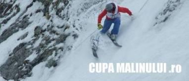 CUPA MALINULUI 12