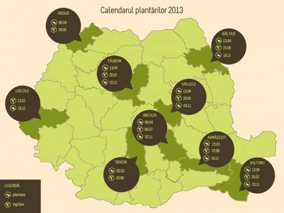 PFB timing actiuni 2013