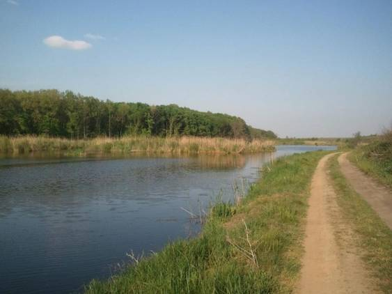 Moara Vlasiei - lac