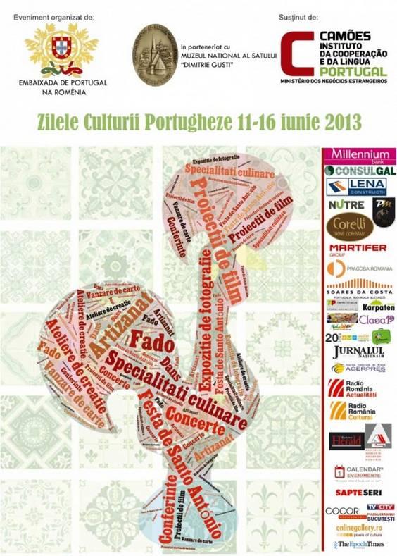 afis-ZCP-11-16-iunie