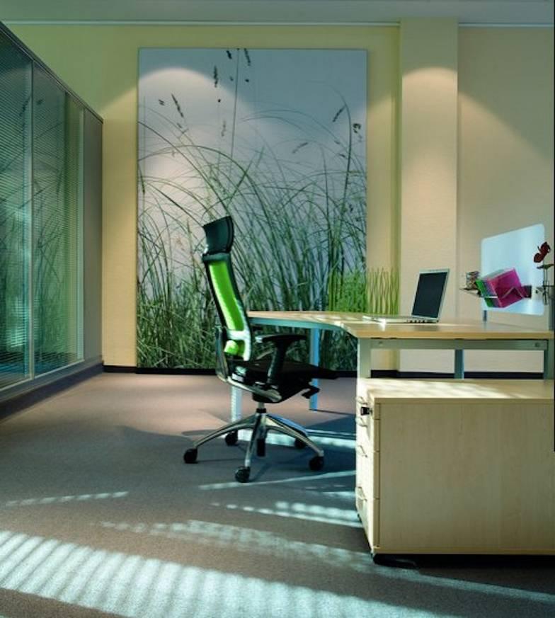Hansen Office Design 1