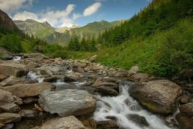 Topolog - zona inalta -Dan Dinu