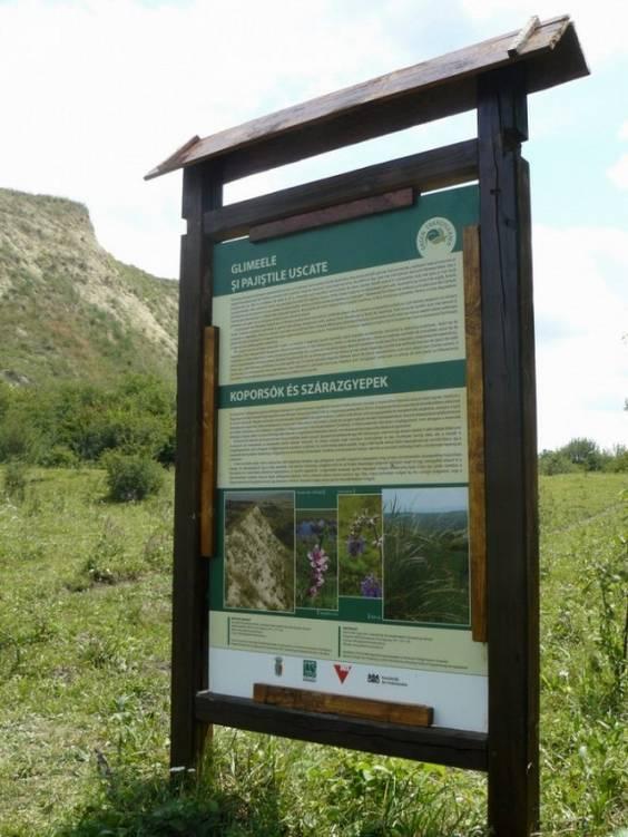 MOL Spatii Verzi - arii naturale protejate