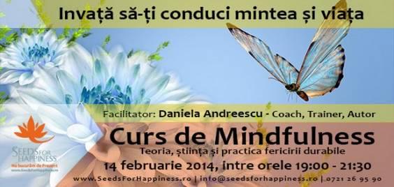 curs_de_mindfulness_opacity1