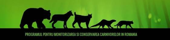banner-carnivore