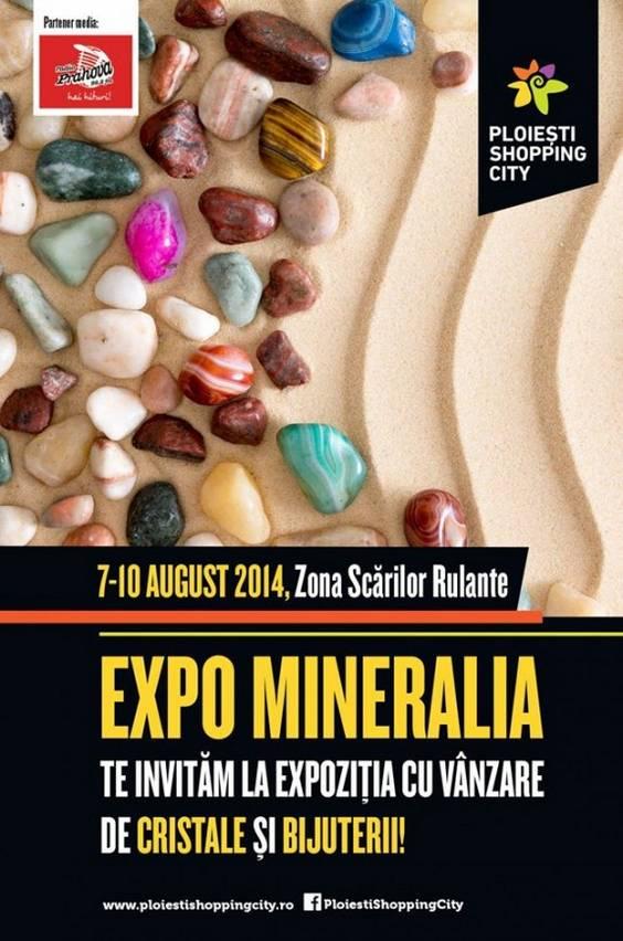 Afis Expo Mineralia - Ploiesti Shopping City