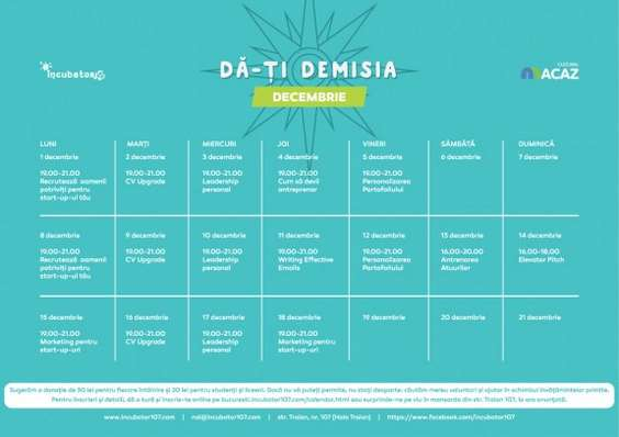 Calendar Da-ti demisia (2)