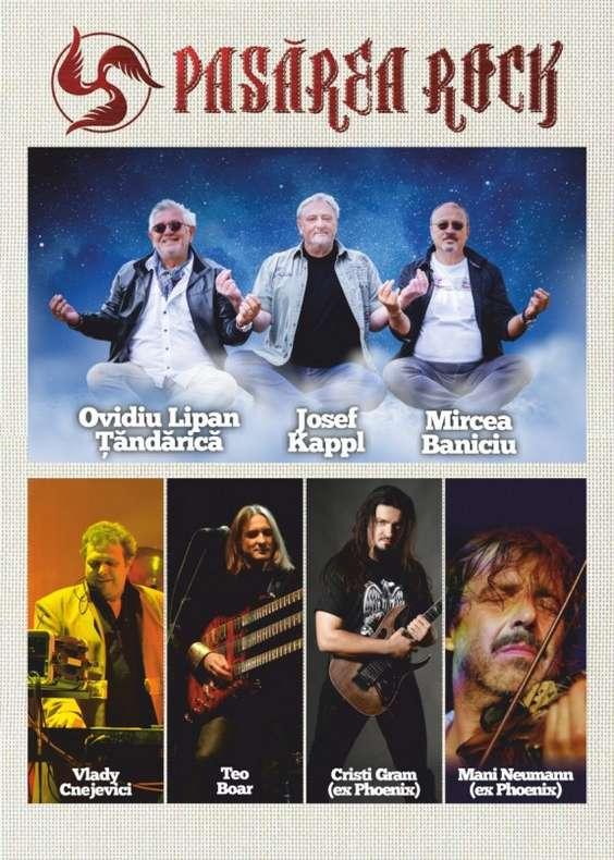 Poster Pasarea Rock