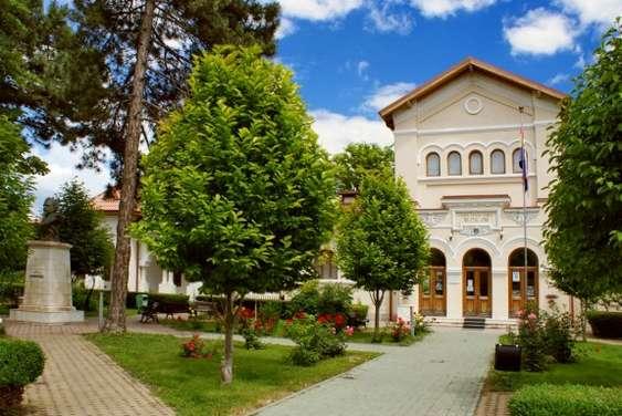 Muzeul Casa Cuza Voda