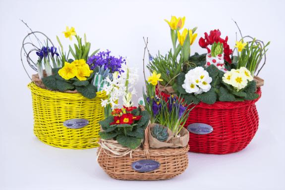 Cosuri Fabulous Baskets cu flori