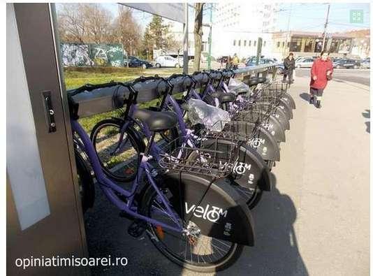 foto biciclete opinia timisoarei
