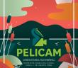 afis_oficial_Pelicam_2015