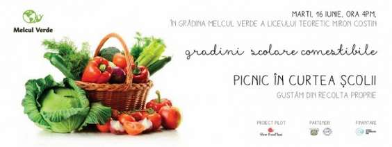 Afis picnic Melcul Verde