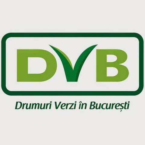 DVB-pt-youtube