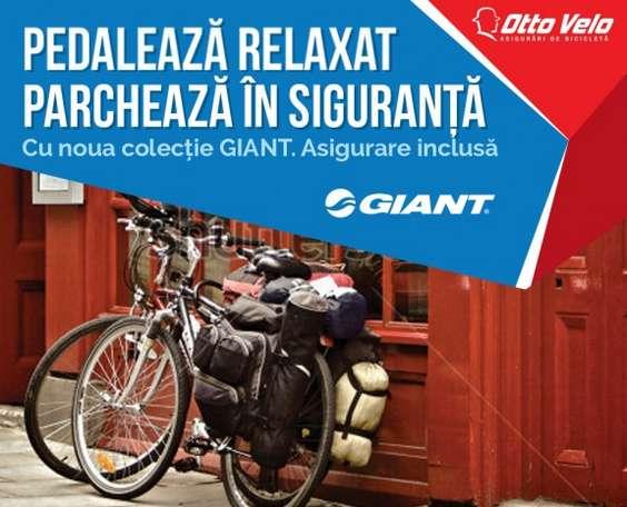 02. Giant asigurata. Generic Concept1