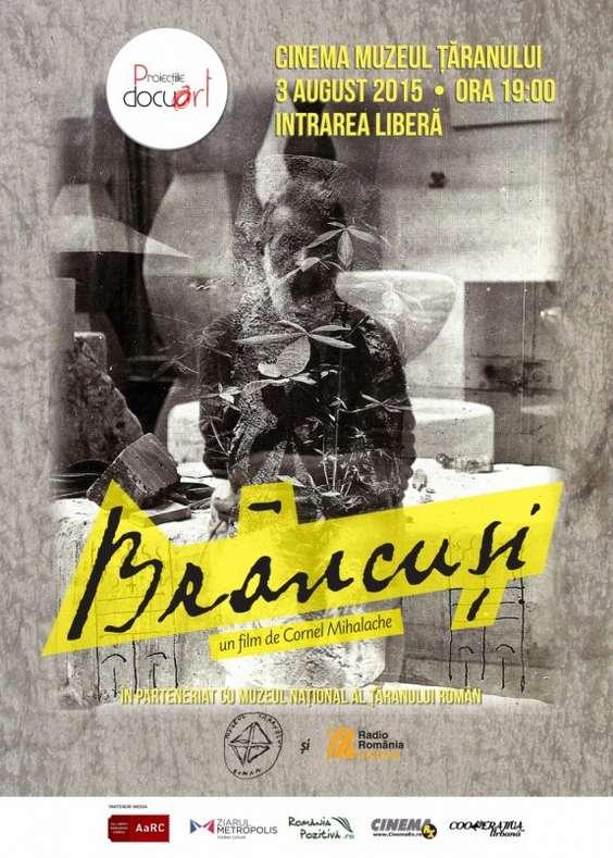 Proiectie_brancusi