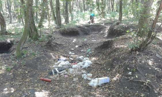 Padurea Stejaru Tarnaveni - inainte de ecologizare