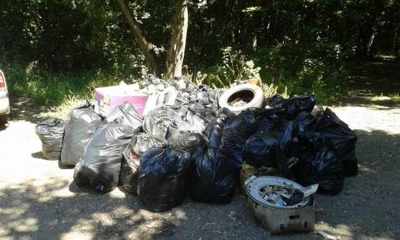 Peste 50 de saci cu deseuri colectati