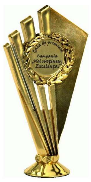 trofeu_campania_de_excelenta_or[640x480]