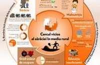 Infografic - Cercul vicios al saraciei