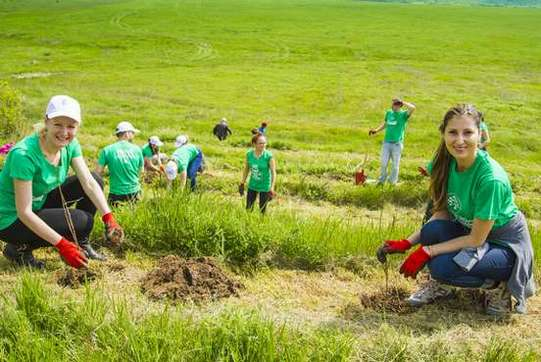 Acțiune de plantare UPC România și MaiMultVerde  (2)