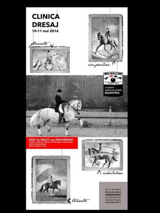 Afis Clinica Dresaj_Clubul Equestria
