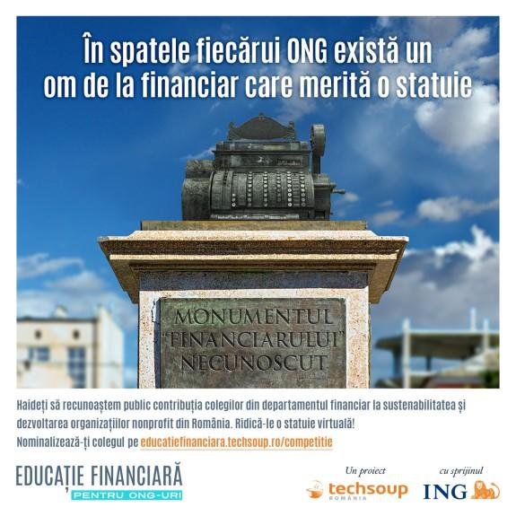 Responsabilul financiar al anului in mediul ONG - grafica