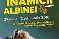 Albinele si noi 2016