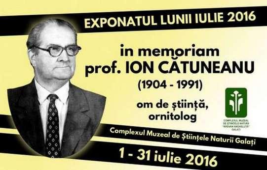 web Catuneanu 2016
