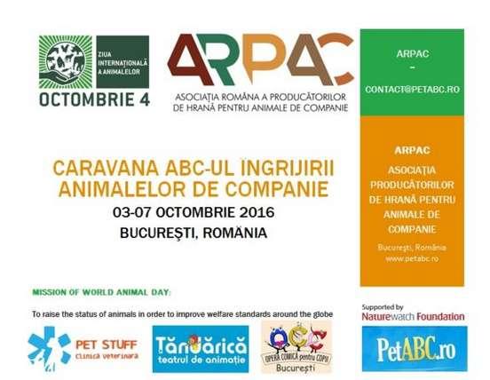 poster-ziua-internationala-a-animalelor