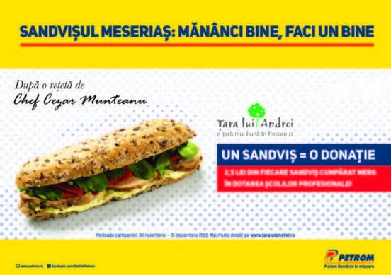 sandvisul-meserias_2