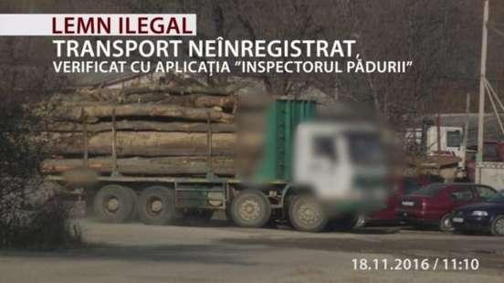transport-ilegal