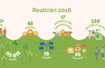 Infografic realizari 2016