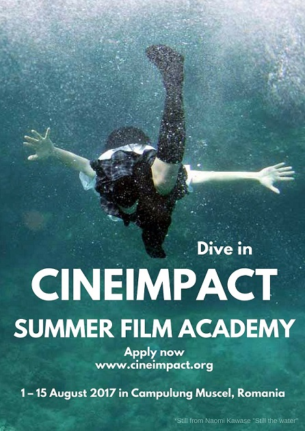 Poster 2017 Cineimpact Summer Film Academy