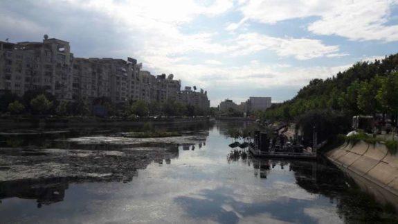 Canoe pe Dambovita smart river romaniapozitiva 2017 poza 7