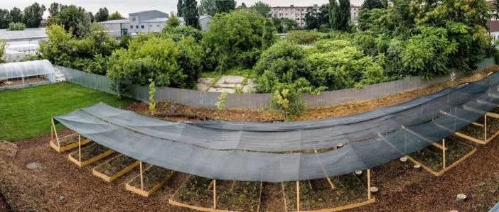 FOTO. Premieră: KAUFLAND își transformă acoperișurile, parcările și exteriorul magazinelor în grădini urbane, pentru comunitate