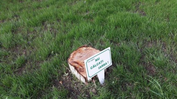 nu calcati iarba romaniapozitiva